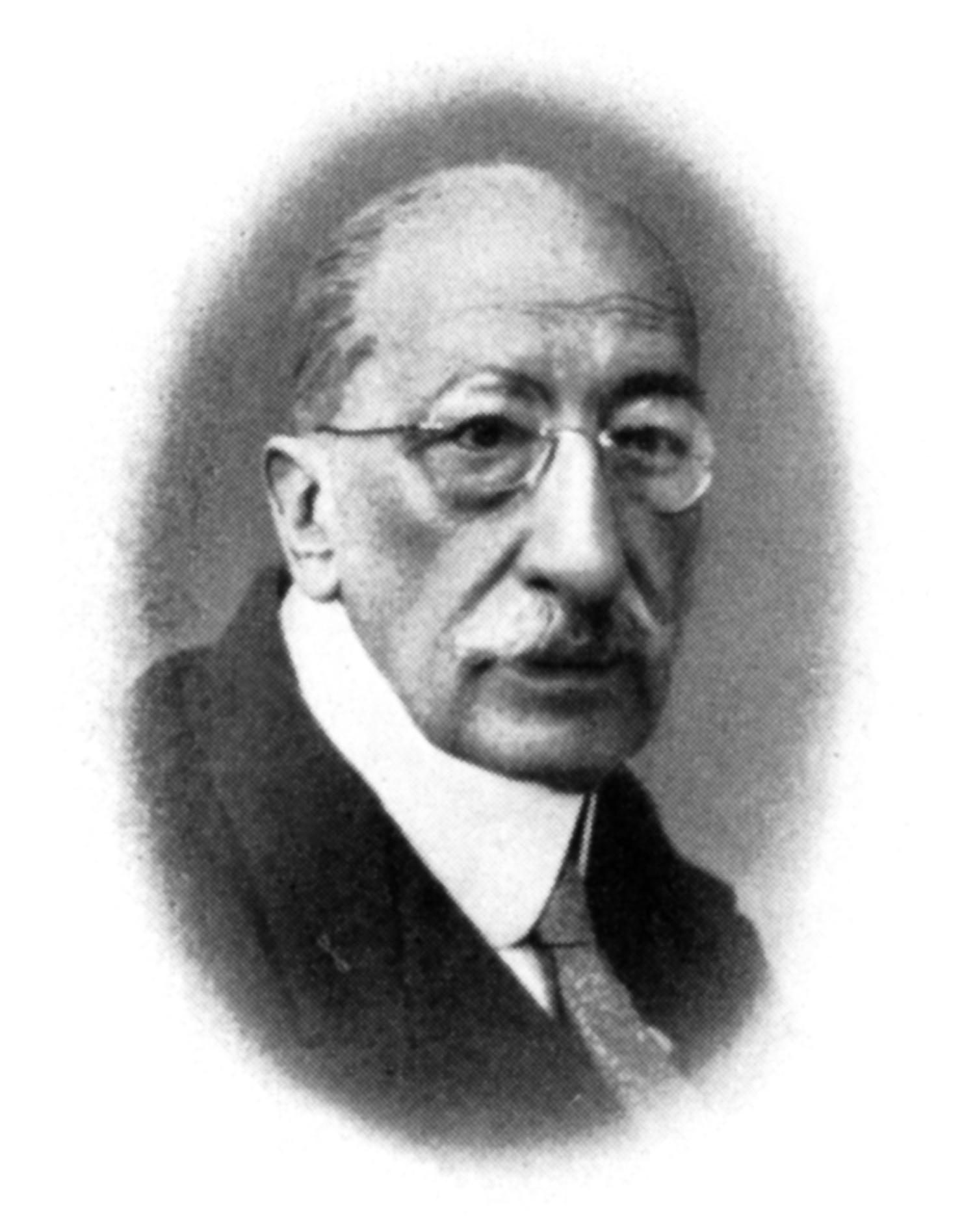 Josef von Stockalper, 1868–1955, Präfekt Bezirk Brig, Präsident des Briger Komitees der Flugwoche 1910